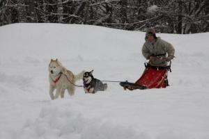 2014年橇練ステラフェリス 790