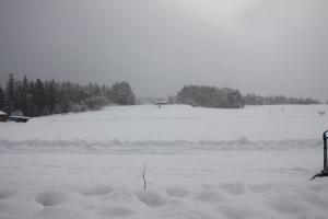 2014年橇練ステラフェリス 775