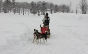 2014年橇練ステラフェリス 957