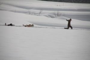 2014年橇練ステラフェリス 1164