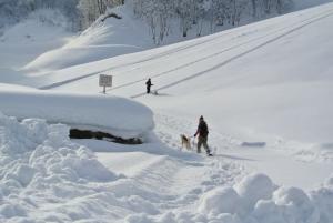 2014年橇練ステラフェリス 013