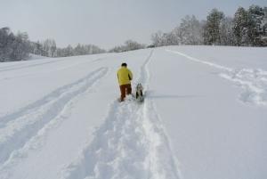 2014年橇練ステラフェリス 028