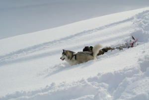2014年橇練ステラフェリス 076