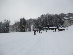2014年橇練ステラフェリス 523