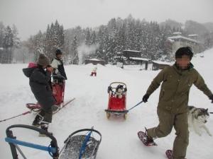 2014年橇練ステラフェリス 526