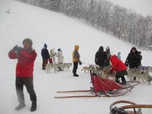 2014年橇練ステラフェリス 546