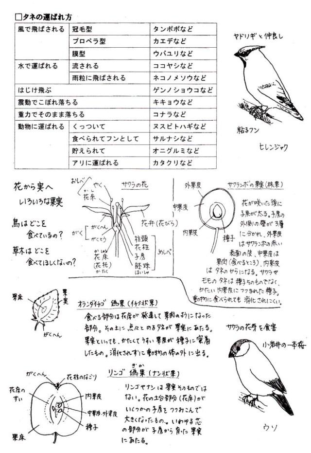 20130617-3 tenzigaido_siryou