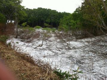 20130607CAAD10光ヶ原高原ヒルクライム残雪2