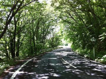 20130627CAAD10山田牧場ヒルクライム