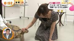 皆藤愛子が亀頭をなでる画像