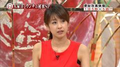 加藤綾子アナのホンマでっかTV脇画像
