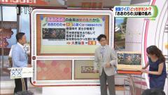 枡田絵理奈アナ前屈み画像