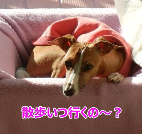 blog_20141007223611562.jpg