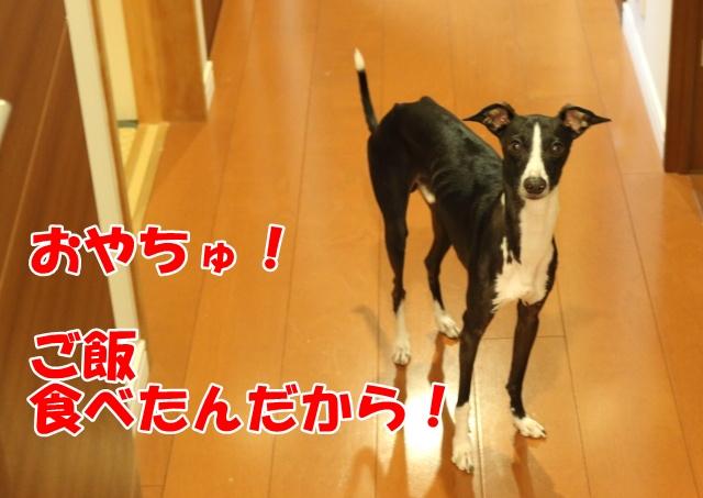 2014/10/07 その6