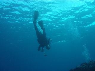 20071022南岸ガオー潜行直美