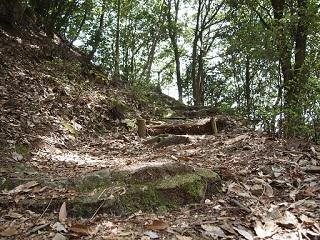 20130416七種山登山道