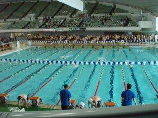 20110703マスターズ大会飛び込み練習