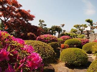 20130503八木亭日本庭園