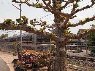 20130505八木亭木津線電車