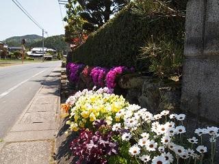 20130508上畑木工・玄関の花