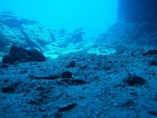 20130527宮古島ガウディー海底
