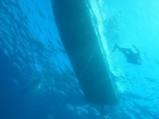 20130527宮古島八重丸船底