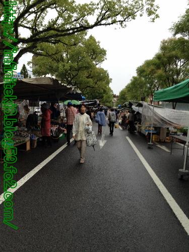 kochi84.jpg