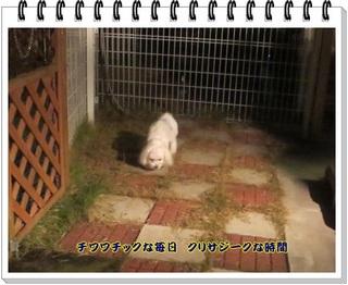 HPIMG_4811-thumbnail2.jpg