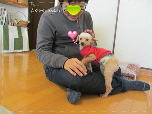 miniIMG_3518.jpg