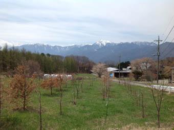 2013 4月春-4