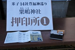 D3C_9251-s4.jpg