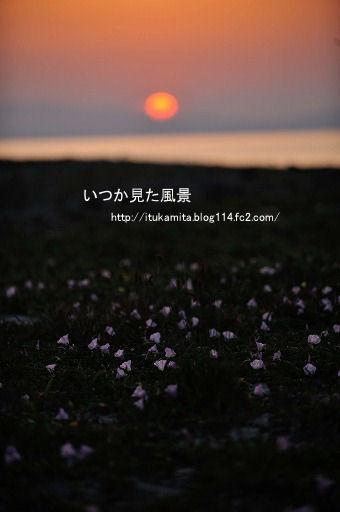 DS7_0120ri-ss.jpg