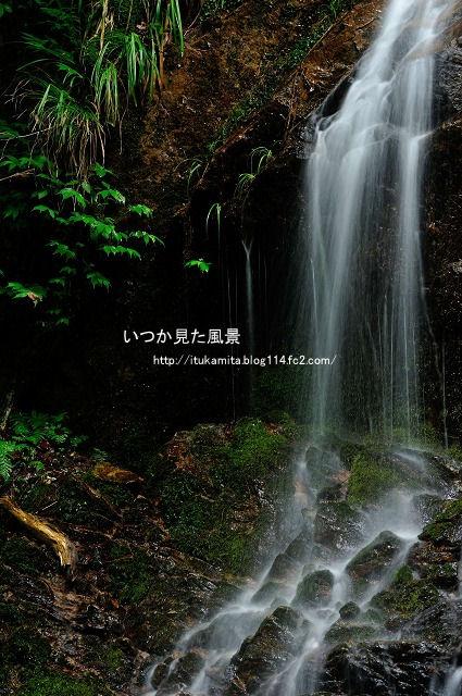 DS7_1596ri-s.jpg