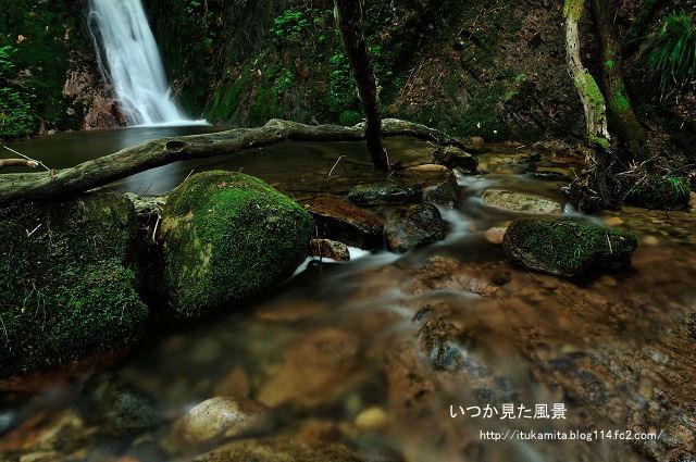 DS7_1620ri-s.jpg