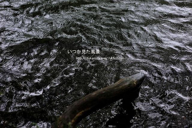 ざわめきの湖面