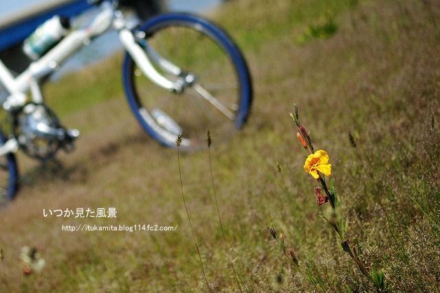 DS7_9081ri-s.jpg