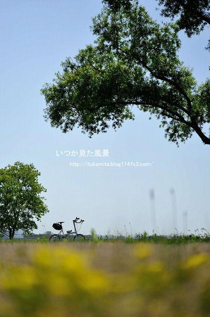 DS7_9110ri-s.jpg