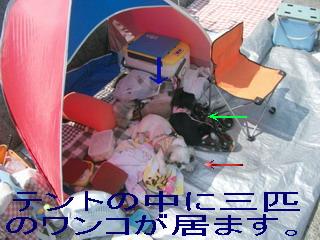 DSCF9208ブログ03