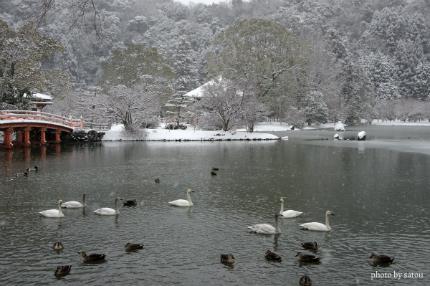 阿弥陀堂雪景色3