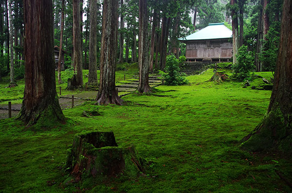 苔の映える平泉寺