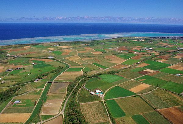 石垣島の陸と海