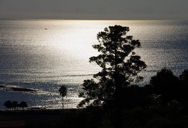 日南海岸の海照