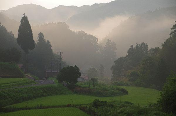 山王寺の朝霧