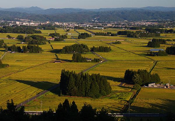 円万寺からのエグネ風景
