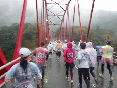 いびがわマラソン2013 (5)