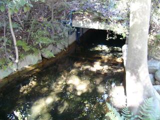 岡山後楽園水源