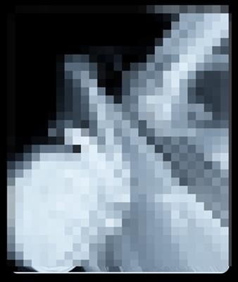 ⑨DSC_0028