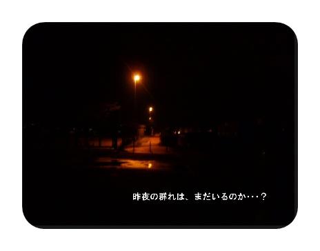 PA080936.jpg
