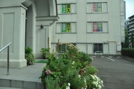 saikano_sendai01-02-P170-2.jpg