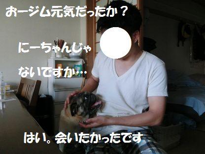CIMG4120.jpg
